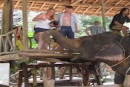Escursioni con Elefanti
