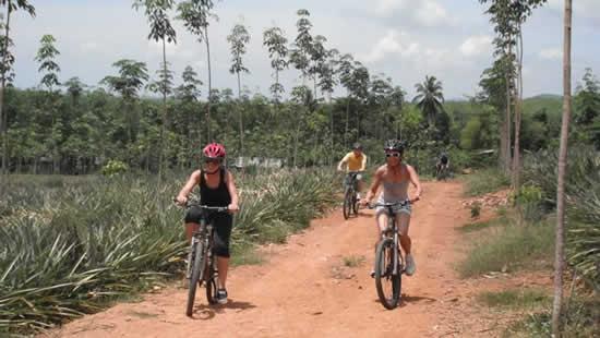 Escursioni in Bicicletta a Phuket