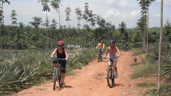 Phuket Bicicletta Escursioni